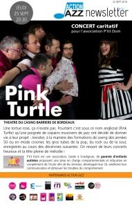 NL16-PINK TURTLE